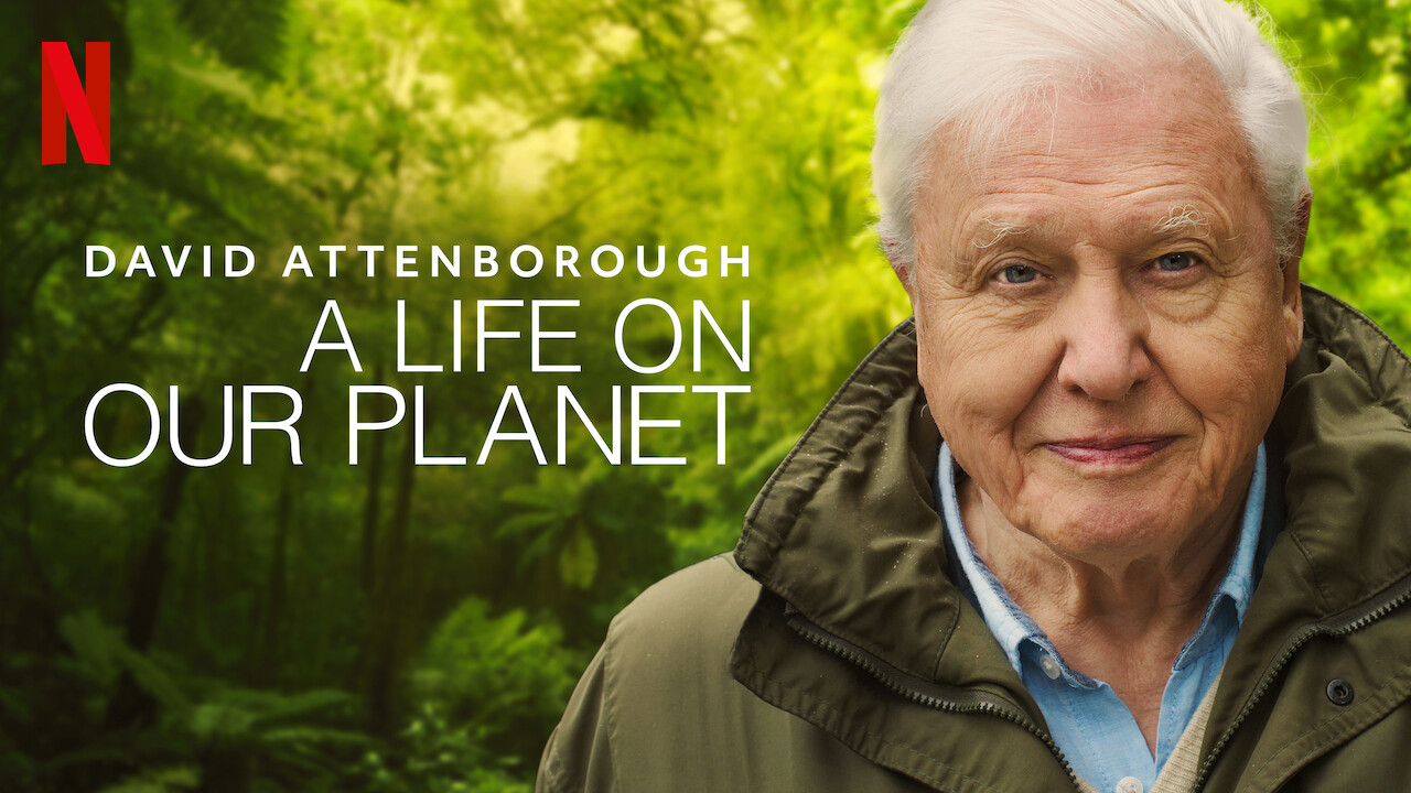 https://www.crisp-magazine.com/wp-content/uploads/2020/10/David-Attenborough-A-life-on-our-planet-feature.jpg